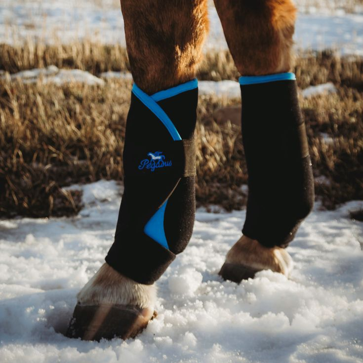 Pegasus Air Boots are now available in Ontario, Canada at Natural Equine Connection.