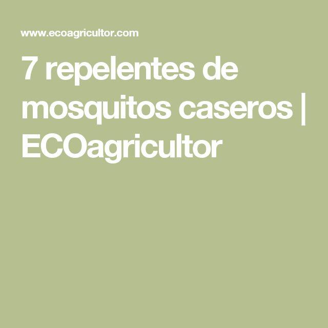 7 repelentes de mosquitos caseros   ECOagricultor