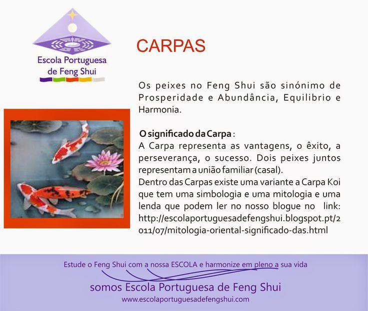 Escola Portuguesa de Feng Shui: CARPAS