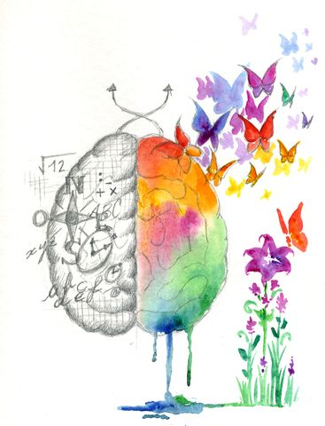 The right and left hemispheres of our brains are very different -     Picture © Carla F. Castagno