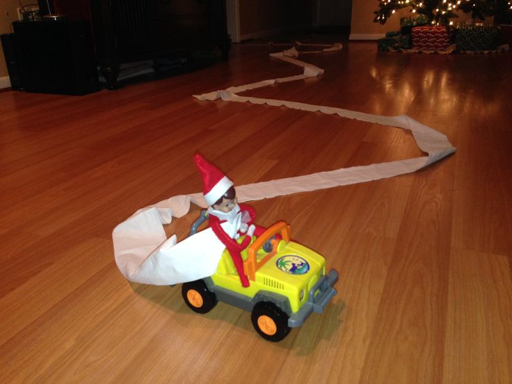 He drove around the living room from the bathroom. The toilet paper was still attached to the roll and to ELFY!!