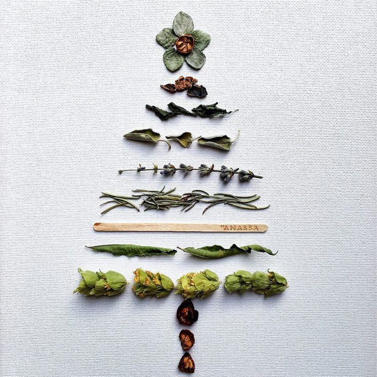 DRINK ENJOY LOVE// Anassa's Tree of Well Being. Photography credits Go to Polina Sarri  http://www.anassaorganics.com