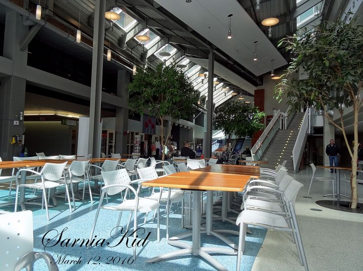 366 Project---Day 72: Having a Timmies snack in the Atrium at Bluewater Health today.