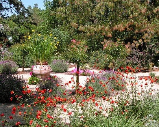 104 best Drought Tolerant Garden images on Pinterest Landscaping - drought tolerant garden designs
