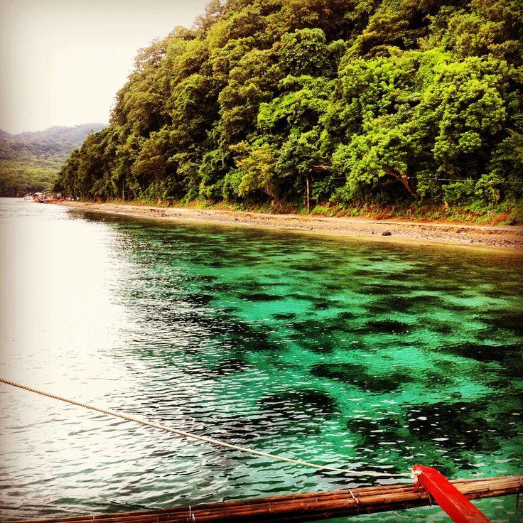 Marbled sea #anilao #batangas #philippines