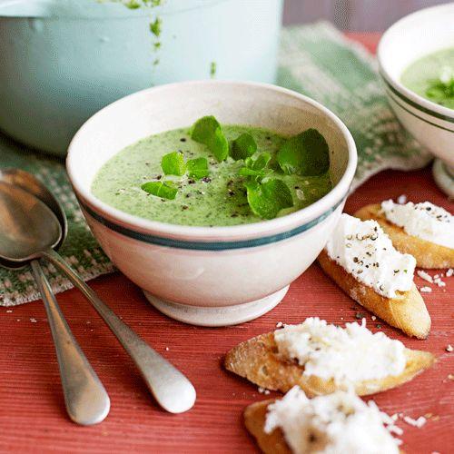 Deze frisse soep maak je met waterkers en bleekselderij. De aardappel en knoflook geven een romige smaak aan het geheel. Serveer met ricottatoast.    1. Breng 350 ml water aan de kook. Voeg de waterkers toe, en laat 3 min. koken. Spoel met koud water af,...
