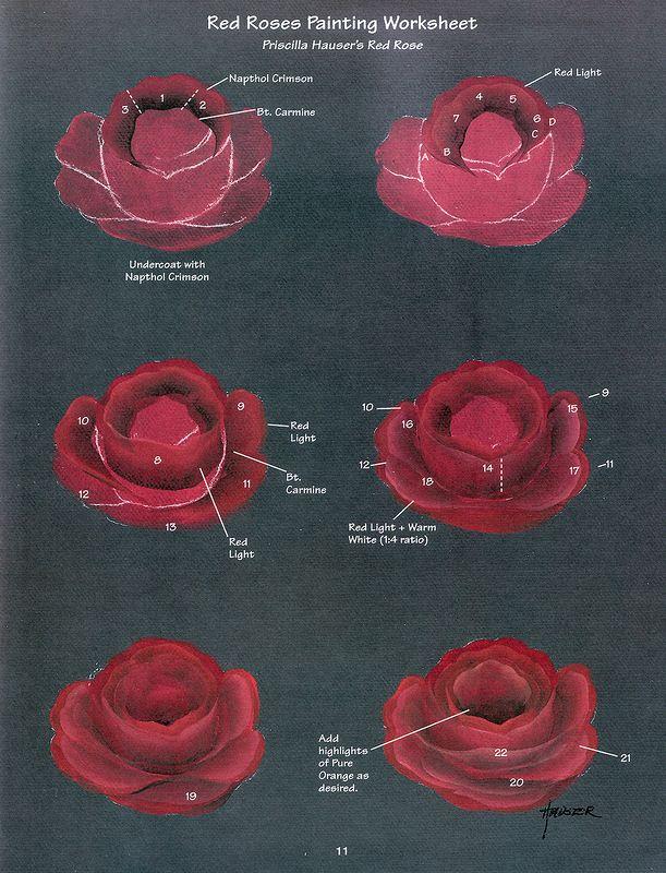 Priscilla adlı Güzel Güller