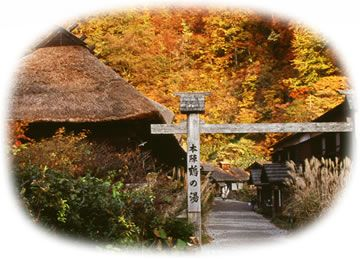 AKITA TRIP Tsurunoyu, one of 7 onsen (visit in fall, maybe winter and stay at the hotel. Tattoos are allowed)
