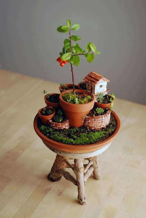 Mini jard n en maceta con base madera ideas verdes - Casitas en macetas ...