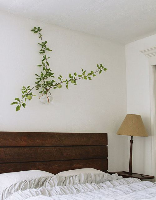 Vase over the bed: wake up looking at the branch of a fruit tree or flowers / source: david + sarah by missmossblog, via Flickr