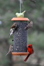 the garden-roof coop: DIY Sunflower Tower Bird-Feeder
