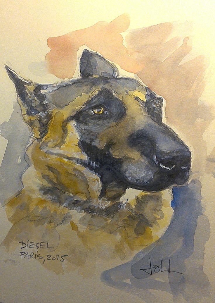 Diesel, Paris 2015 Watercolor portrait by joll
