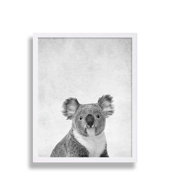 Baby Koala Print Baby Animal Nursery Art Australia Animals