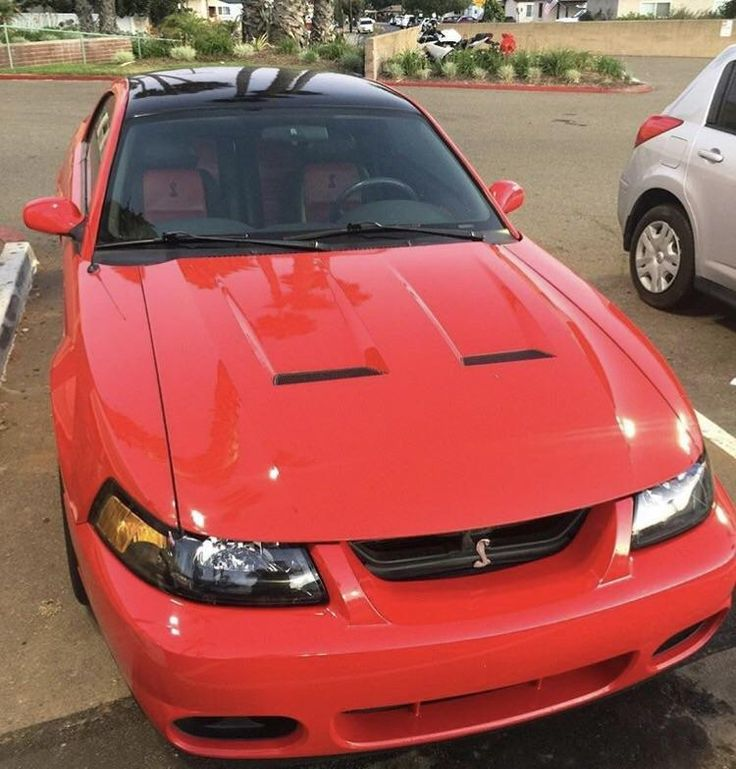 17 Best Ideas About Mustang Cobra For Sale On Pinterest