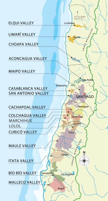 Chile's wine regions - Cono Sur Vineyards & Winery
