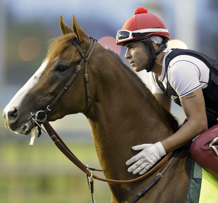 California Chrome - there's a connection going on with this colt & his jockey