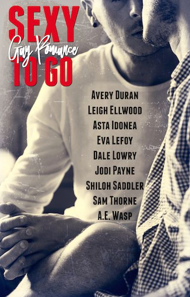 Sexy to Go Gay Romance Anthology Cover