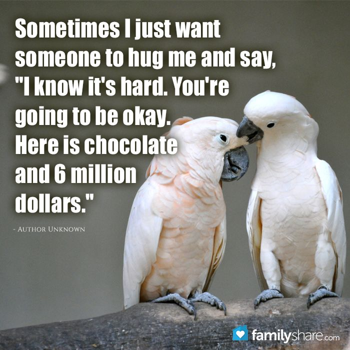 I Want To Cuddle With You Quotes: 22 Best Funny Pictures Of Josh Groban Images On Pinterest