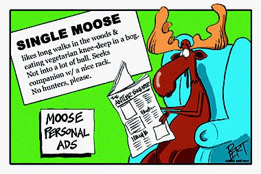 Moose Personal Ads Cartoon Magnet