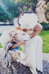 Dogs in weddings  Dog ring bearer  Dog flower girl  Bride and dog  dog walks down aisle at in wedding