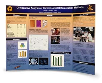 scientific tri fold posters