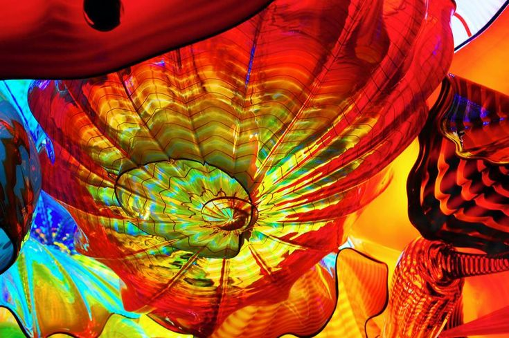 Dale Chihuly Art Glass
