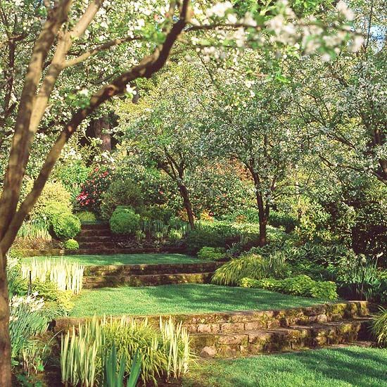 I wish my ugly mossy back yard would magically transform in to this.