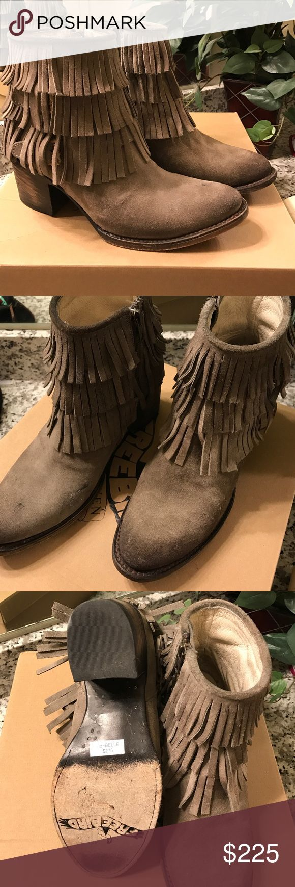 Freebird Belle Gray Bootie size 8 Freebird by Steve Madden: genuine leather, fringe, gray bootie. Brand new in original packaging. Steve Madden Shoes Ankle Boots & Booties