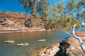 Canoeing along the Murchison River in Kalbarri, Western Australia
