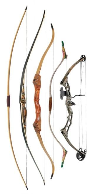 Left to right - Traditional English Longbow; Flat Bow; Recurve Bow; Mongolian Bow; Compound Bow.