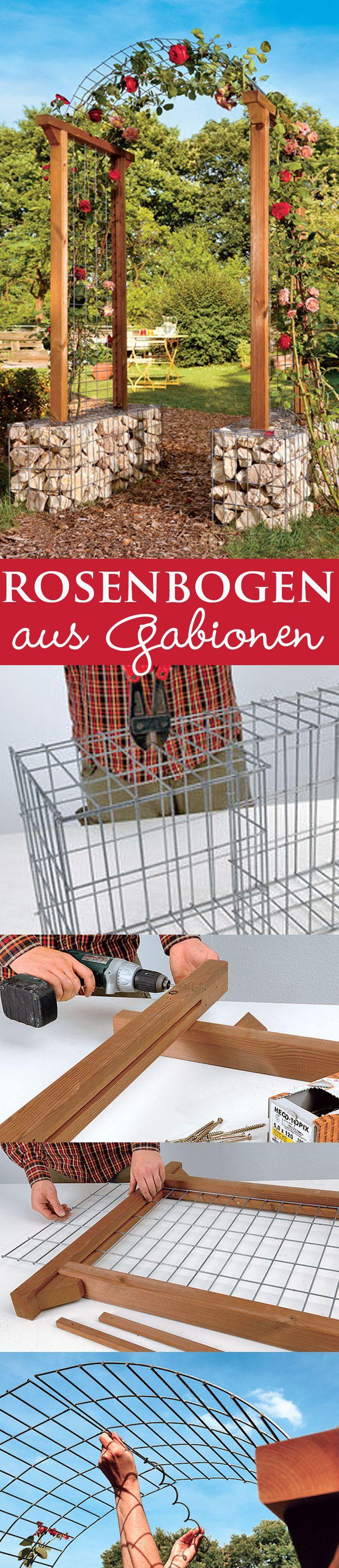 1000+ Images About Garten On Pinterest Brombeeren Pflanzen Und Schneiden Pflegetipps Fur Hobby Gartner
