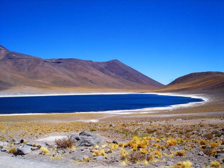 Laguna Miscanti (Deserto do Atacama - Chile)