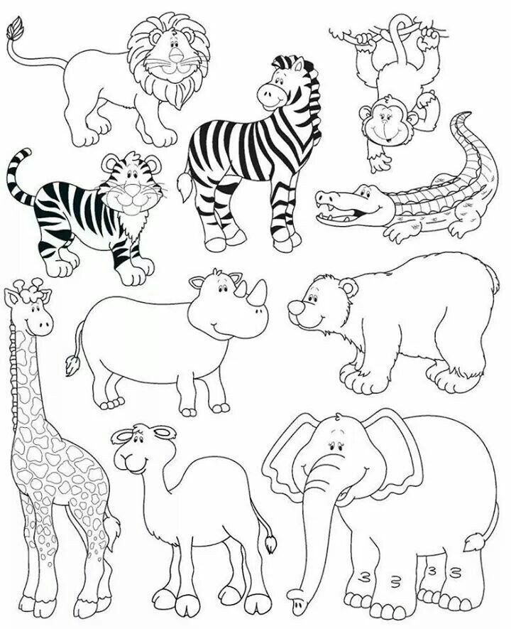 Endangered Animals Coloring Pages Animales De La Selva in ...