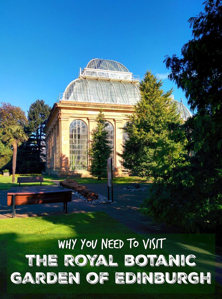 Find out why you need to visit the Royal Botanic Garden of Edinburgh. Click to read more about the world's best botanic garden