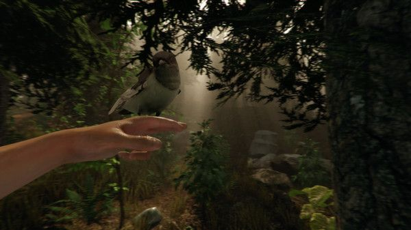 The Forest en Steam