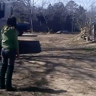 Goose running to its best friend