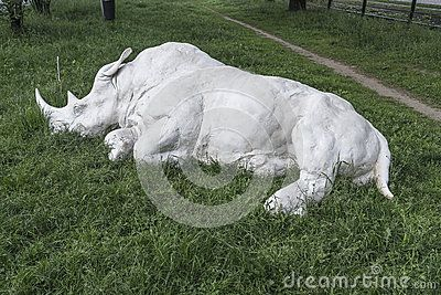 White Rhino Statue on Dietla street in Krakow , Poland.In the old, historic Jewish area of the city.