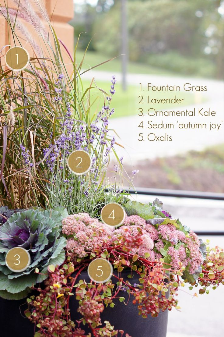 How to Make a Simple Fall Planter