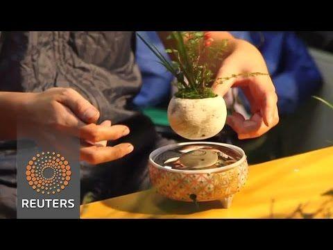 Bonsai trees 'float' using magnetic levitation - YouTube