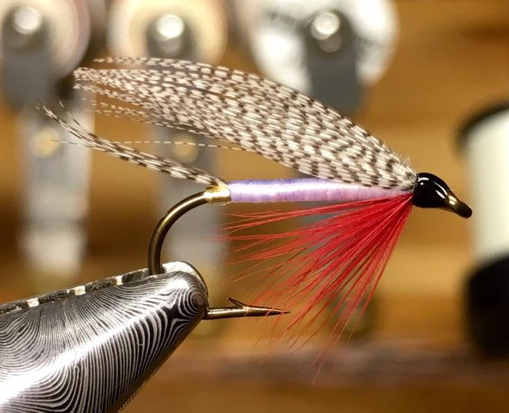 1244 best fly pattern wet flies images on pinterest bait for Fly fishing feathers