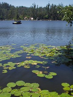 Kodaikanal lake.jpg