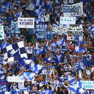 The mighty Canterbury Bankstown Bulldogs