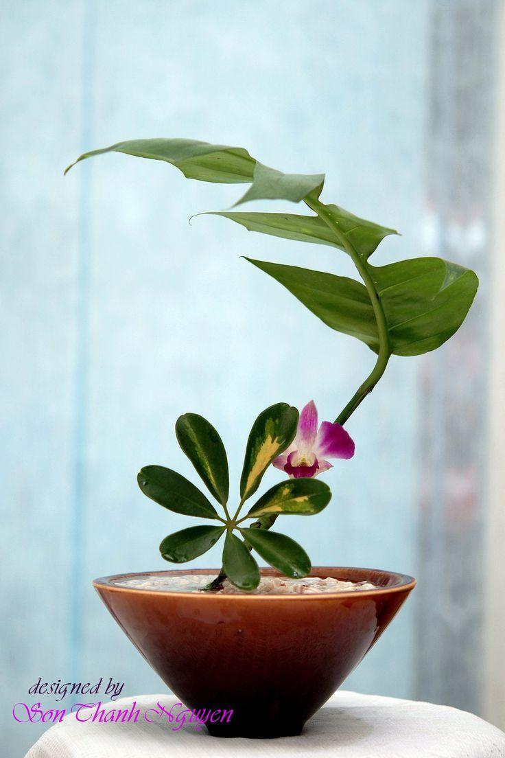 ikebana #japan #decoration #flowers