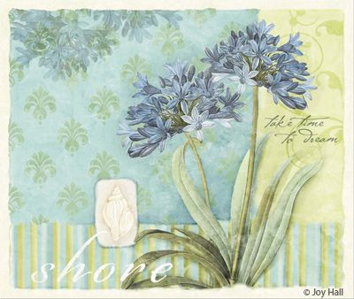 """Coastal Garden """"Take time to dream"""", by by Courtney Davis (Joy Hall)"""