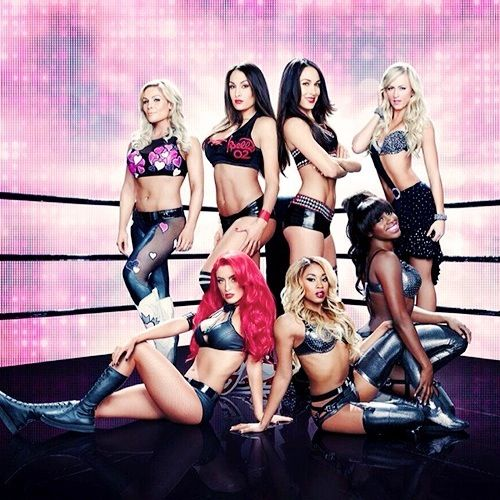 Total Divas kick ass and look hot while doing it! WWE may be fake but it takes REAL skill doing what they do!
