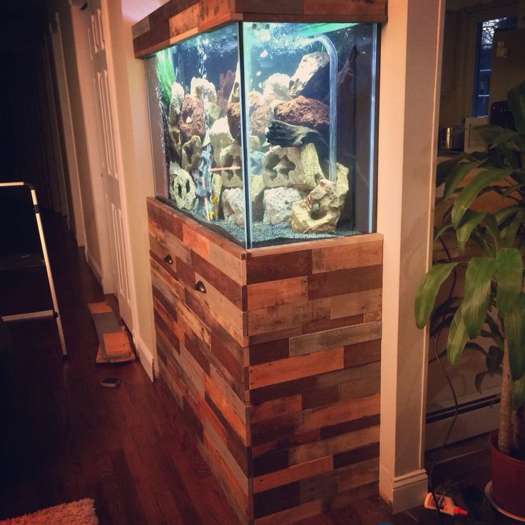 1000 images about pallet projects fish tank on pinterest for Pallet aquarium stand