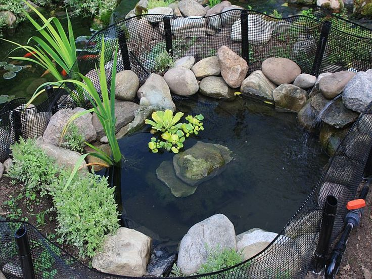 Pin by denise toshach on garden pinterest Diy indoor turtle pond