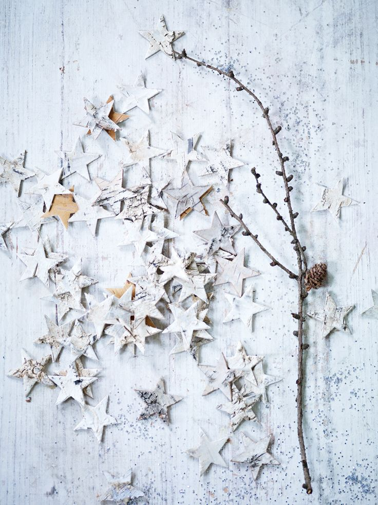 birch bark sheets cut into stars. Glue on plywood if you like something more rigid. String on twine.