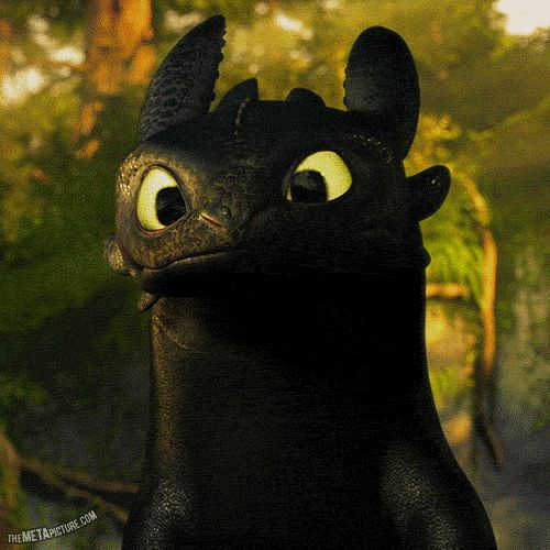How To Train Your Dragon Gif Toothless...  The simple awesomeness  @Jed Bowtell Bowtell Bowtell Bowtell McAfee