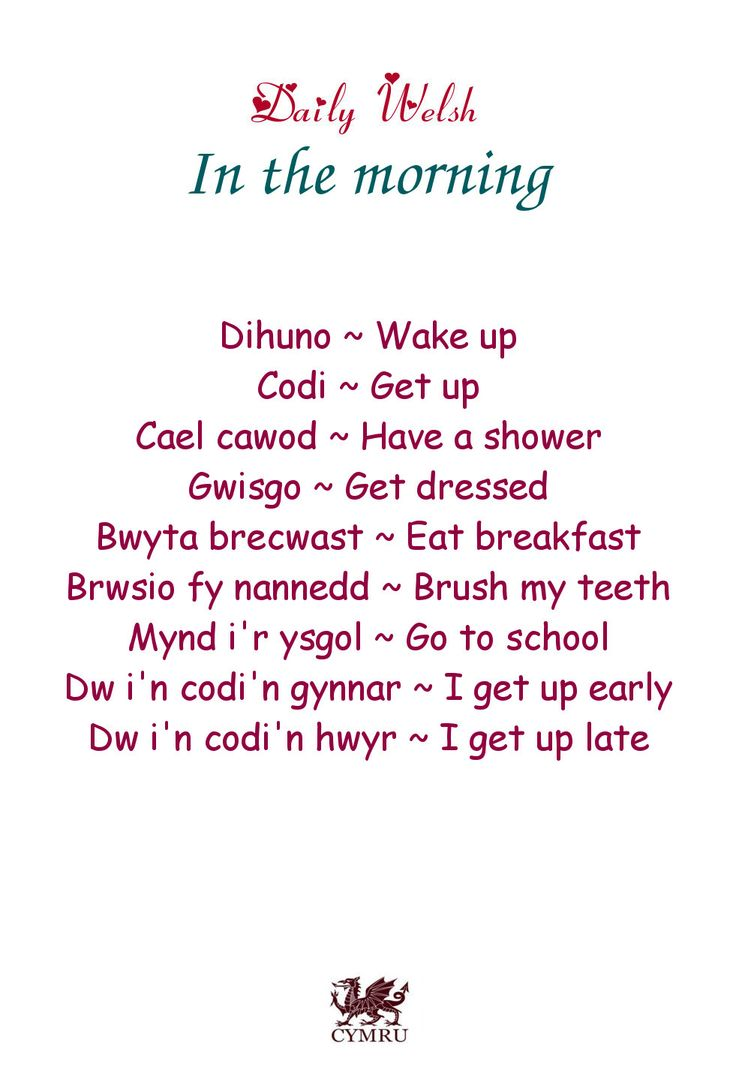Daily Welsh: In the morning.
